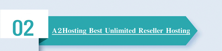 best-reseller-hosting-plans-web-white-label-whmcs-windows-wordpress-cpanel-companies-comparison-dedicated-vps-a2hosting